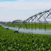 Fonduri europene pentru infrastructura de irigaţii - A demarat primirea cererilor