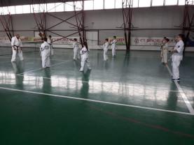 CS BIHORUL Beiuș – Antrenamente intense, la secția de karate!