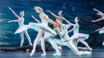 Compania  Sankt Petersburg Classical Balet of Andrey Batalov - Lacul lebedelor la Casa Sindicatelor