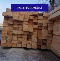Zeci de metri de lemne fără acte în regulă au fost confiscaţi - Poliţiştii, cu ochii pe hoţii de lemne