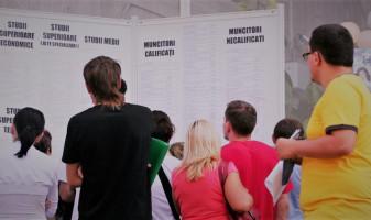 Locuri de muncă vacante în Oradea și Bihor - Peste 1.000 de oferte