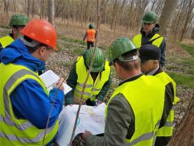 Parcuri naționale și naturale - Romsilva demarează acțiunea de marcare internă