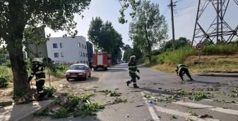Pompierii bihoreni au intervenit în mai multe localităţi - Efectele vijeliei