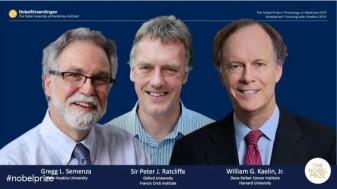Premiul Nobel pentru medicină - Doi americani şi un britanic, laureaţii anului 2019