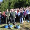 Ocolul Silvic Sudrigiu: Ample acțiuni de plantări
