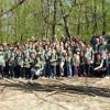 Elevii liceului Sf. Ladislau au plantat 4.000 de puieți - Verde-proaspăt în pădure