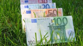 APIA. Schema de înverzire, schemele de suprafaţă - Din 18 octombrie, vor demara plăţile