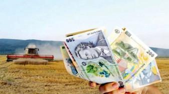 MADR a stabilit termene stricte - Calendarul pentru plata subvenţiilor