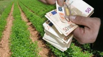 APIA. Campania 2018 - Continuă plăţile către fermieri