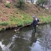 Concluzia Laboratorului de Calitate a Apei - În pârâul Peța se deversează ape menajere