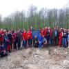 Politicieni la sapă - Au plantat goruni pe dealul Bitii