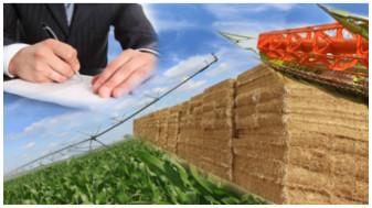 Registrul Agricol 2020 - Noile formulare, termene de declarare