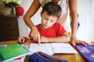 Școala de acasă - Se face și nu prea