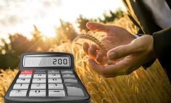 Producătorii și procesatorii agricoli - Obligaţia transmiterii datelor despre stocuri