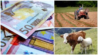 APIA. Subvenţii 2021 - Verificarea datelor şi documentaţiei depuse