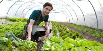 Angajarea tinerilor fermieri în ferme - Documente necesare pentru obţinerea subvenţiei