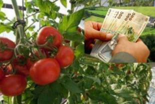 MADR. Programul Tomate - Fonduri suplimentare de aproape 60 milioane lei