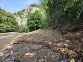 Dezastru ecologic în Defileul Crișului Repede - Situația din teren, catastrofală