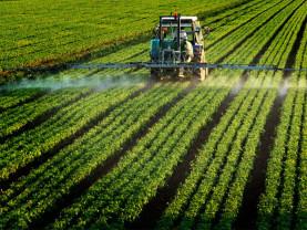 AFIR: Investiții în ferme vegetale și zootehnice - Sprijin de maxim 1,5 milioane euro/beneficiar