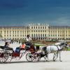 Apreciată pentru scena culturală şi asistenţă medicală - Viena, regina oraşelor