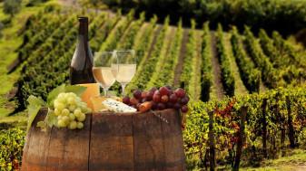 Distilarea vinului în situații de criză - APIA primește cereri de plată
