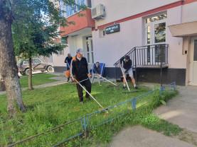 Aleşd. Zeci de cetăţeni au ajutat la igienizarea oraşului - Voluntariatul, componentă a educaţiei civice