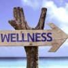 Un eveniment despre Industria Wellness - Termalia 2017