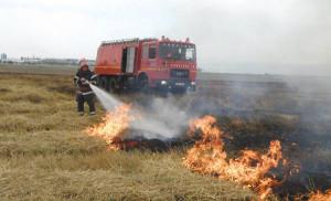 APIA. Arderea miriştilor şi resturilor vegetale - Sub sancţiunea excluderii de la plata subvenţiilor