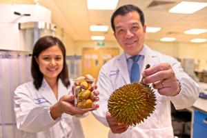 Singapore. Coji de durian transformaţi în medicament - Plasturi antibacterieni revoluţionari