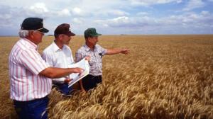 APIA. Precizări privind - Notificarea fermierilor din eșantionul de control