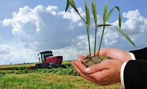 Încasarea subvenţiilor APIA - Reguli obligatorii pentru fermieri