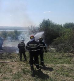 Incendiu masiv de vegetaţie în localitatea Păuşa, comuna Nojorid