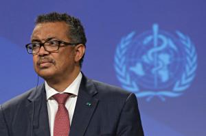 Organizația Mondială a Sănătății - Ultima șansă de a înțelege originile SARS-CoV-2