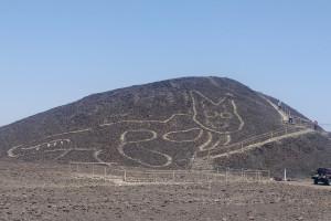 O pisică uriaşă gravată în urmă cu peste 2000 de ani - Motanul Nazca