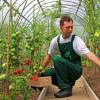 Etape pentru obţinerea sprijiului financiar nerambursabil - Instalarea tinerilor fermieri